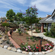 Otay Water District Winner 2019 Cissell Front