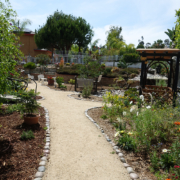 Otay Water District Winner 2019 Cissell Detail8