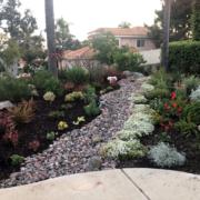 Vista Irrigation District Winner 2020 Robin Z Detail