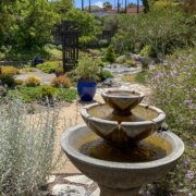 Helix Water District Winner 2021 Rosalie D Fountain